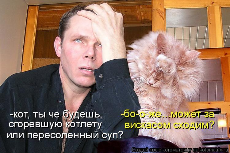 Котоматрица - -кот, ты че будешь, сгоревшую котлету или пересоленный суп? -бо-о-же..