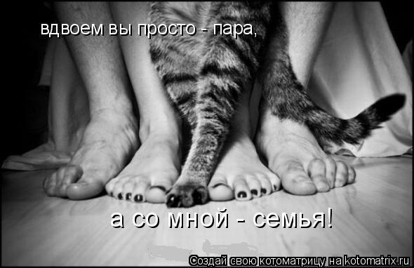 Котоматрица: вдвоем вы просто - пара,  а со мной - семья!