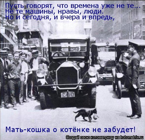 Котоматрица: Пусть говорят, что времена уже не те... Не те машины, нравы, люди. Но и сегодня, и вчера и впредь, Мать-кошка о котёнке не забудет!