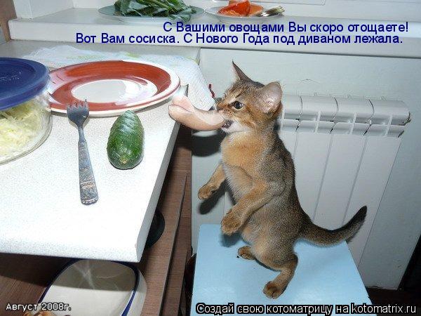 Котоматрица: С Вашими овощами Вы скоро отощаете! Вот Вам сосиска. С Нового Года под диваном лежала.