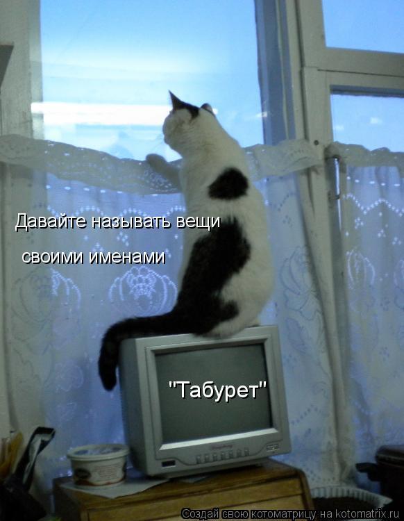 """Котоматрица: Давайте называть вещи своими именами """"Табурет"""""""