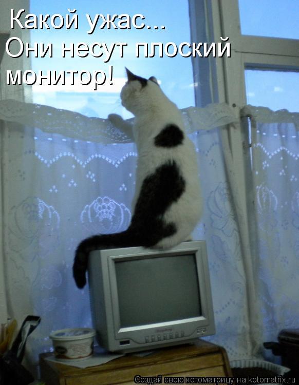 Котоматрица: Какой ужас... Они несут плоский  монитор!