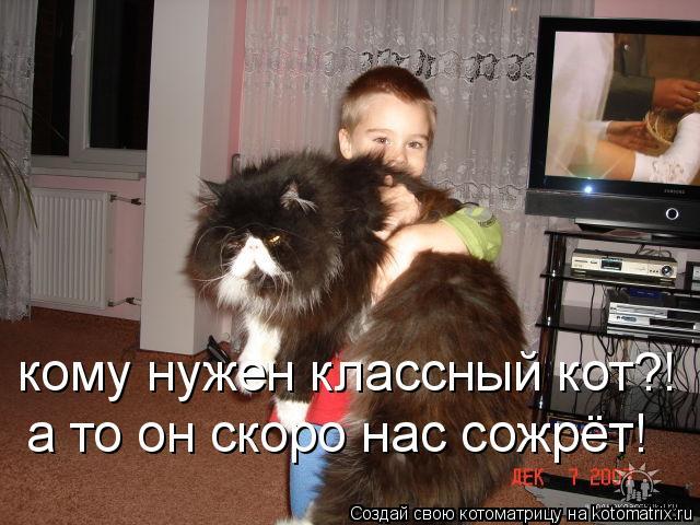 Котоматрица: кому нужен классный кот?! а то он скоро нас сожрёт!