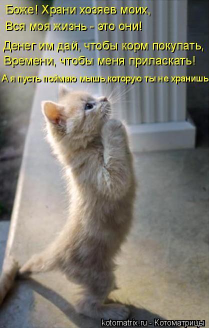 http://kotomatrix.ru/images/lolz/2011/04/13/883132.jpg