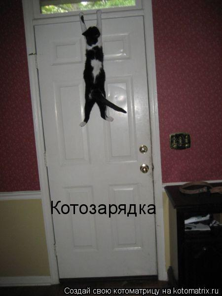 Котоматрица: Котозарядка