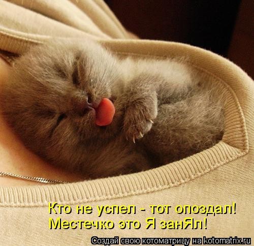 http://kotomatrix.ru/images/lolz/2011/04/13/883252.jpg