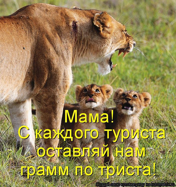 http://kotomatrix.ru/images/lolz/2011/04/13/883344.jpg