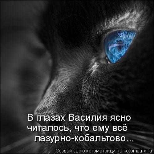 Котоматрица - В глазах Василия ясно читалось, что ему всё лазурно-кобальтово...