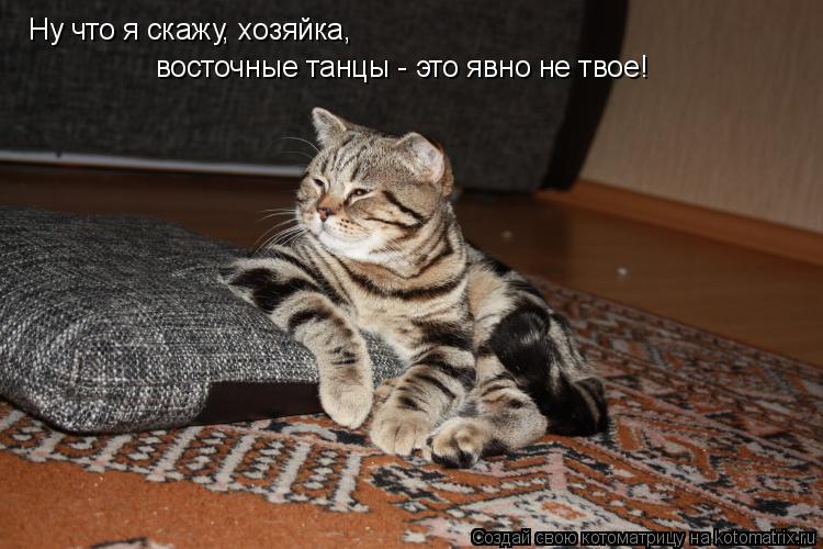 Котоматриця!)))) - Страница 3 883732