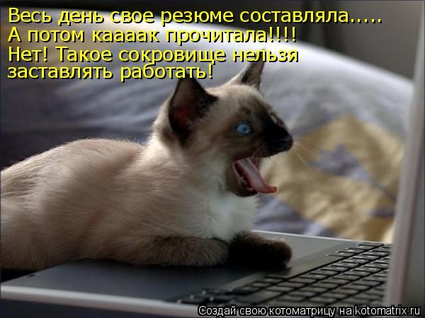 http://kotomatrix.ru/images/lolz/2011/04/14/884049.jpg