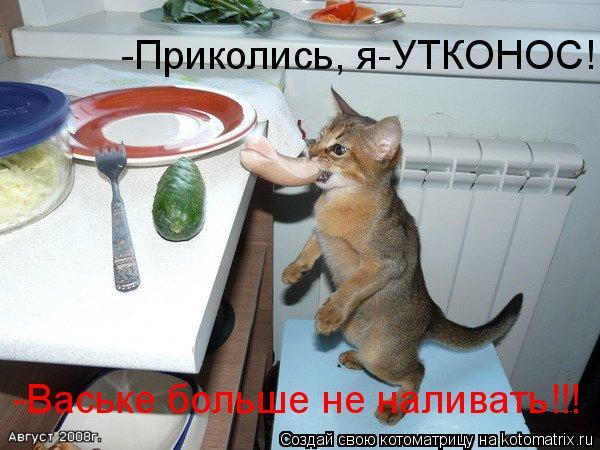 Котоматрица: -Приколись, я-УТКОНОС! -Ваське больше не наливать!!!
