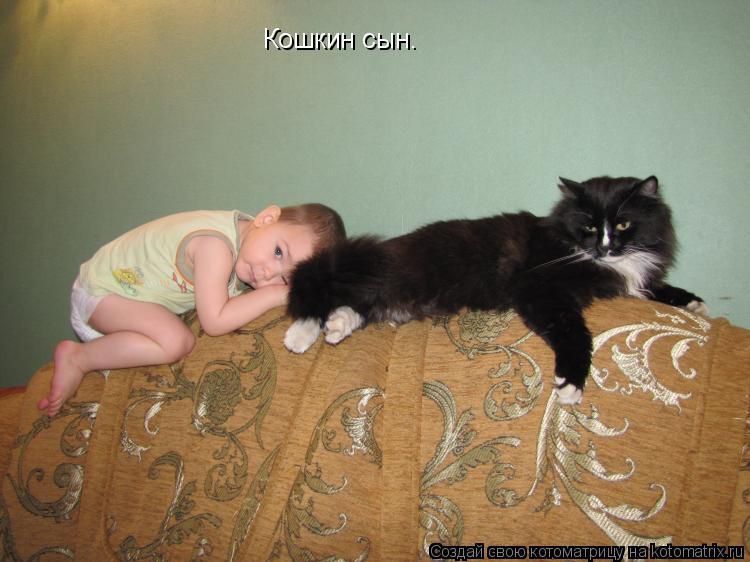 Котоматрица: Кошкин сын.