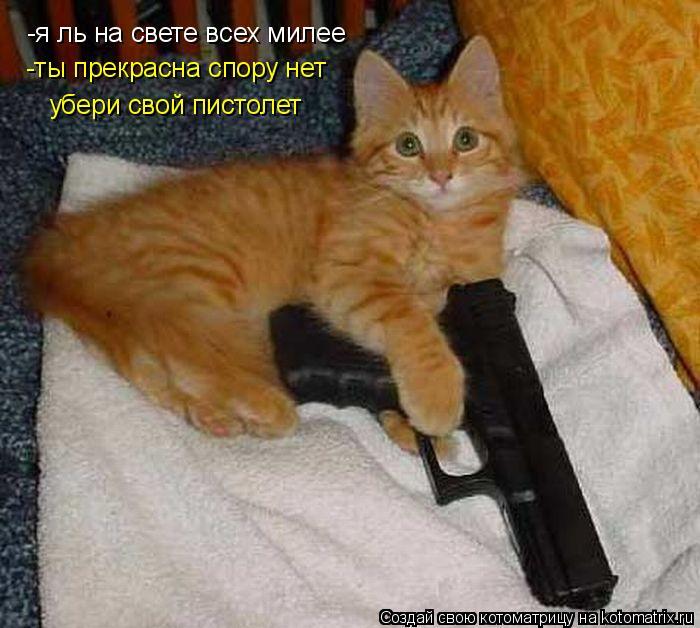 Котоматрица: -я ль на свете всех милее -ты прекрасна спору нет убери свой пистолет