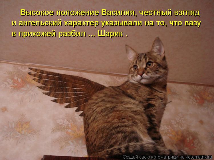 Котоматрица: в прихожей разбил ... Шарик . и ангельский характер указывали на то, что вазу Высокое положение Василия, честный взгляд