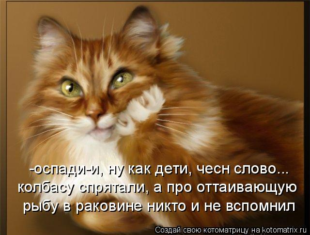 Котоматриця!)))) - Страница 4 886620