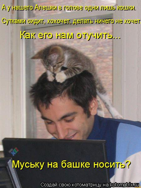 Котоматрица: А у нашего Алешки в голове одни лишь кошки. Сутками сидит, хохочет, делать ничего не хочет. Как его нам отучить... Муську на башке носить?