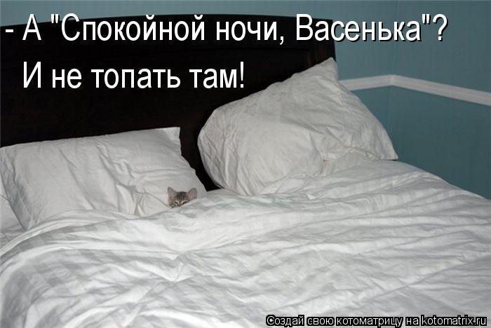 """Котоматрица: - А """"Спокойной ночи, Васенька""""?  И не топать там!"""