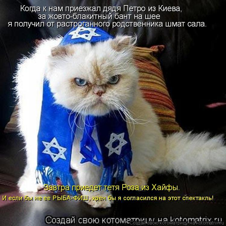 Котоматрица - Когда к нам приезжал дядя Петро из Киева,  за жовто-блакитный бант на