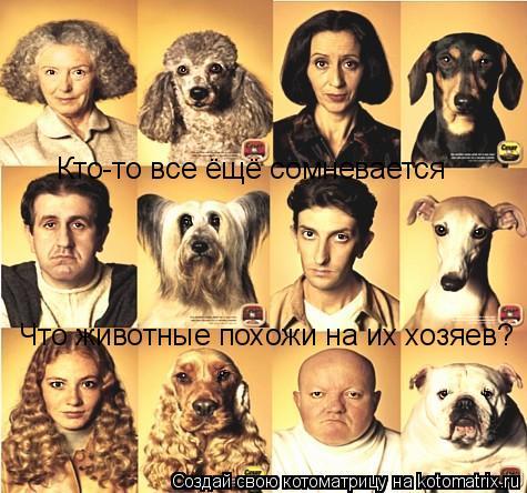 Котоматрица: Кто-то все ёщё сомневается Что животные похожи на их хозяев?