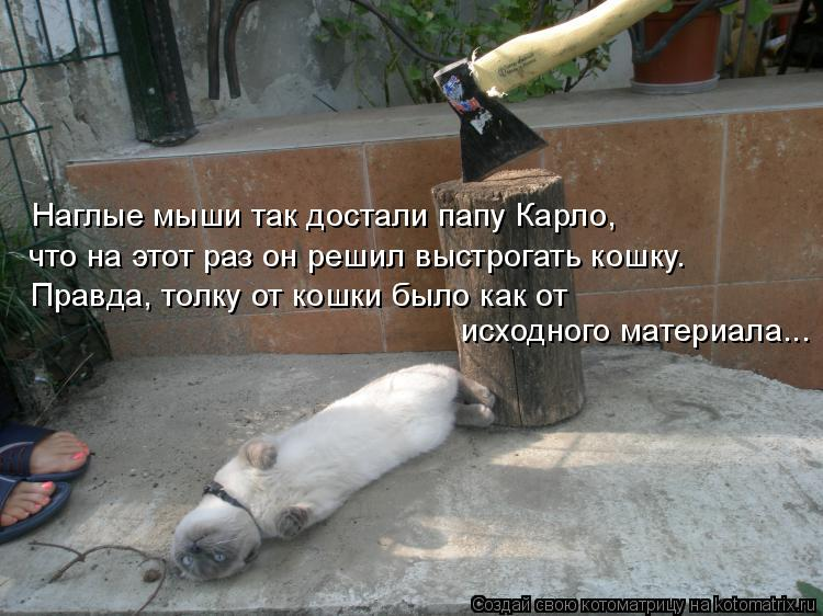Котоматрица: Наглые мыши так достали папу Карло,  что на этот раз он решил выстрогать кошку. Правда, толку от кошки было как от  исходного материала...
