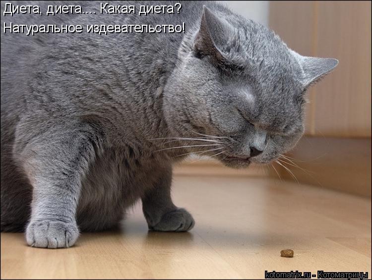 http://kotomatrix.ru/images/lolz/2011/04/19/888013.jpg
