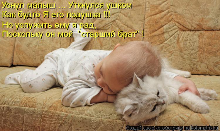 """Котоматрица: Уснул малыш ... Уткнулся ушком Как будто Я его подушка !!! Поскольку он мой  """"старший брат"""" ! Но услужить ему я рад,"""
