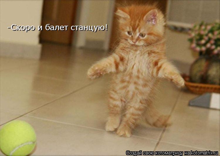 Котоматрица: -Скоро и балет станцую!