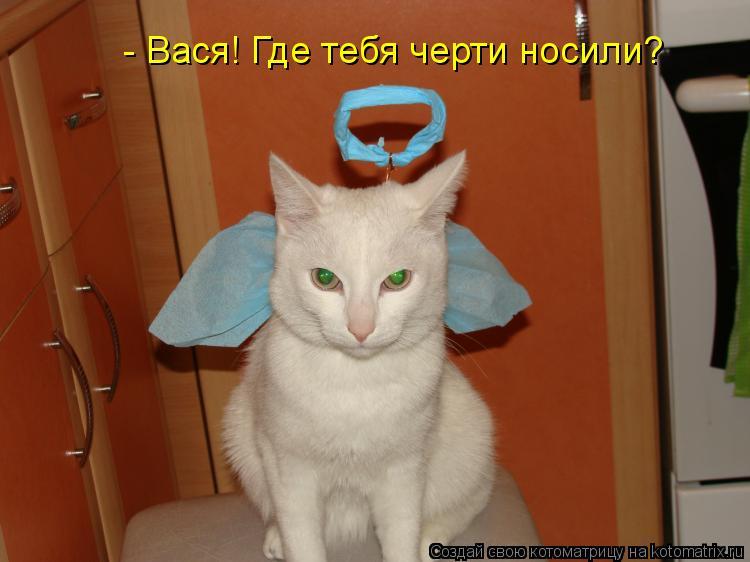 Котоматрица - - Вася! Где тебя черти носили?