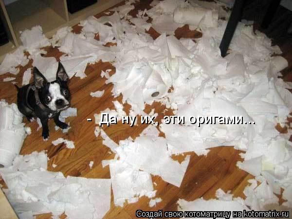 Котоматрица: -  Да ну их, эти оригами...