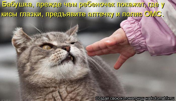 Котоматрица - Бабушка, прежде чем ребеночек покажет, где у кисы глазки, предъявите а