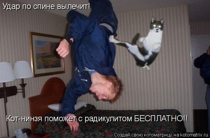 Котоматрица: Удар по спине вылечит!  Кот-нинзя поможет с радикулитом БЕСПЛАТНО!!