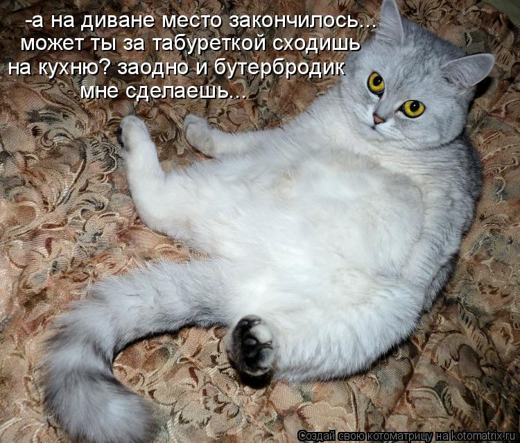 Котоматриця!)))) - Страница 3 889924