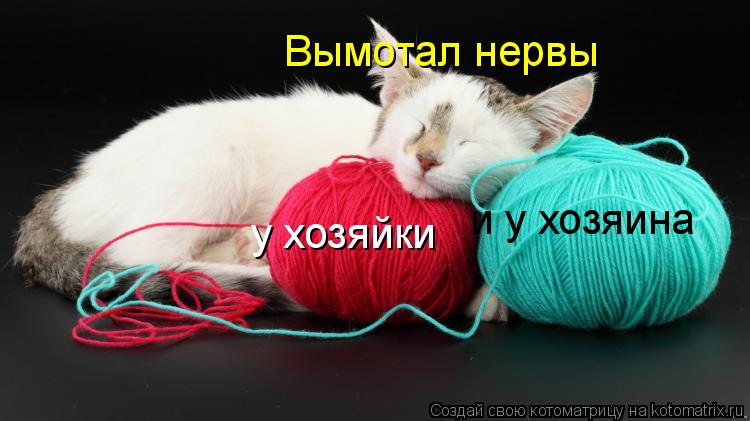 http://kotomatrix.ru/images/lolz/2011/04/21/890205.jpg