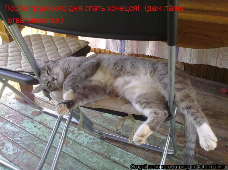 Котоматрица: После трудового дня спать хочецся!! (даж лапы  отваливаются )
