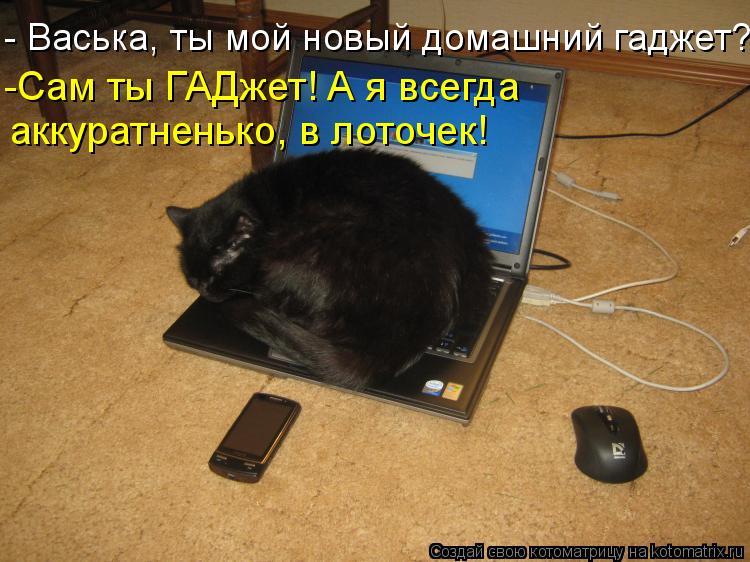 Котоматрица - - Васька, ты мой новый домашний гаджет? -Сам ты ГАДжет! А я всегда  ак