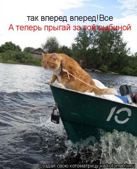 Котоматрица: так вперед вперед! Все А теперь прыгай за той рыбиной