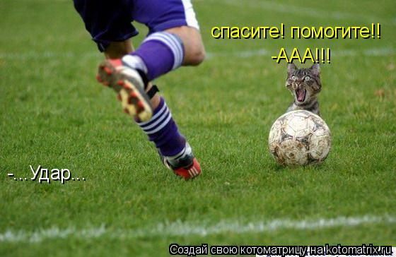 Котоматрица: -...Удар... -ААА!!! спасите! помогите!!