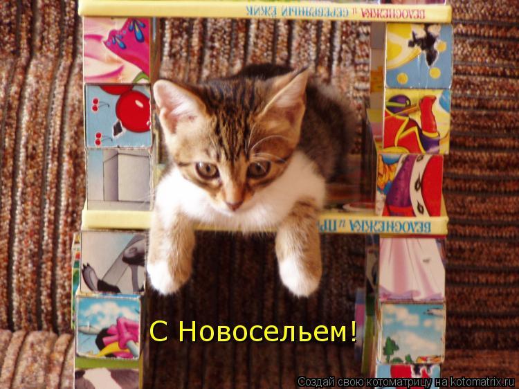 http://kotomatrix.ru/images/lolz/2011/04/24/892185.jpg