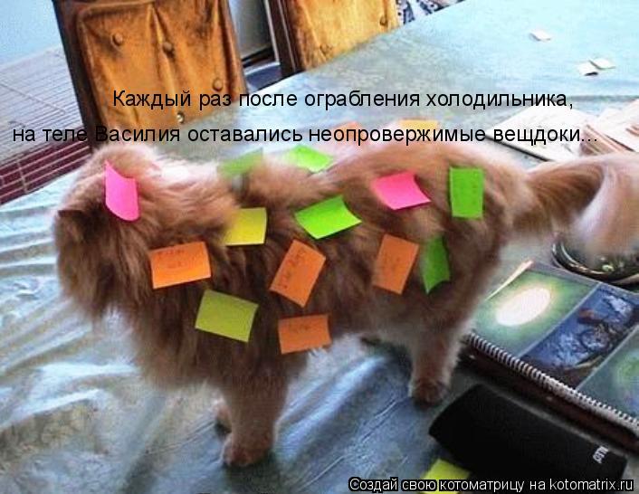 Котоматрица: Каждый раз после ограбления холодильника,  на теле Василия оставались неопровержимые вещдоки...
