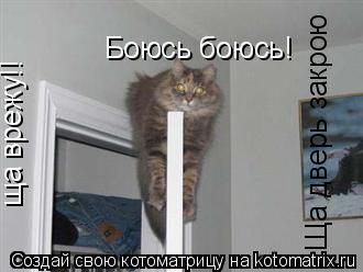 Котоматрица: Боюсь боюсь! ща врежу!! Ща дверь закрою