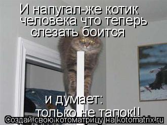 Котоматрица: И напугал-же котик  человека что теперь слезать боится и думает:  только не тапок!!