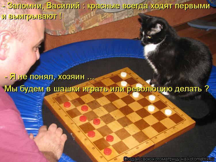 Котоматрица: - Запомни, Василий : красные всегда ходят первыми и выигрывают ! Мы будем в шашки играть или революцию делать ? - Я не понял, хозяин ...