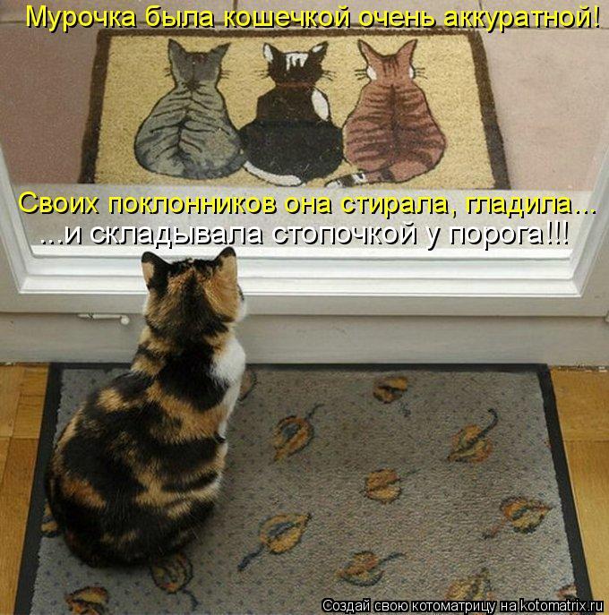 Котоматрица - Мурочка была кошечкой очень аккуратной! Своих поклонников она стирала,