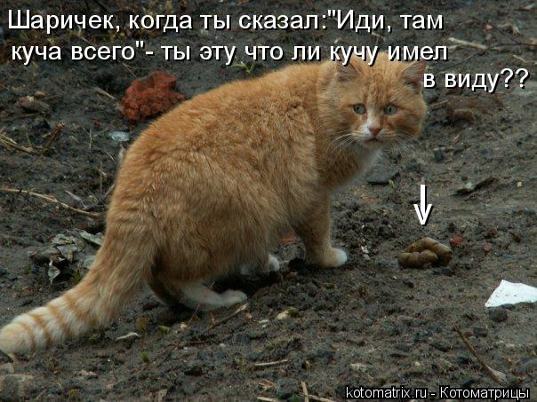 Котоматриця!)))) - Страница 2 893210