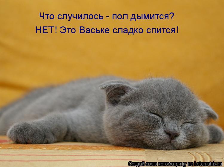 Котоматрица: Что случилось - пол дымится? НЕТ! Это Ваське сладко спится!