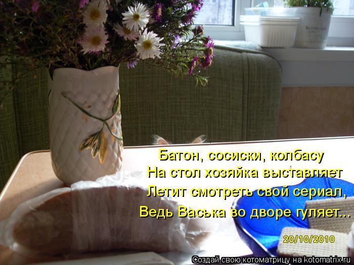 Котоматрица: Батон, сосиски, колбасу На стол хозяйка выставляет Летит смотреть свой сериал, Ведь Васька во дворе гуляет...