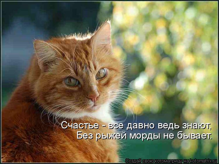 Котоматрица: Счастье - все давно ведь знают, Без рыжей морды не бывает.