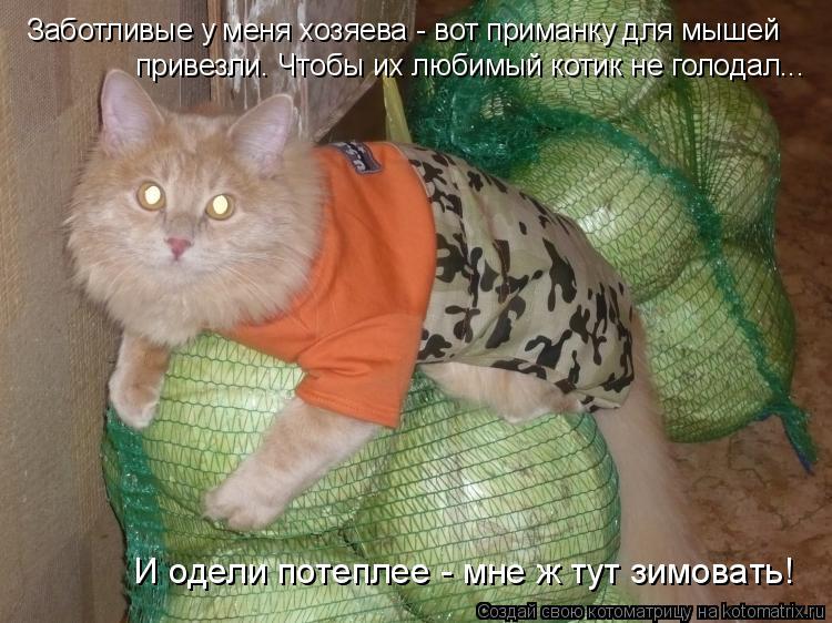 http://kotomatrix.ru/images/lolz/2011/04/27/894648.jpg