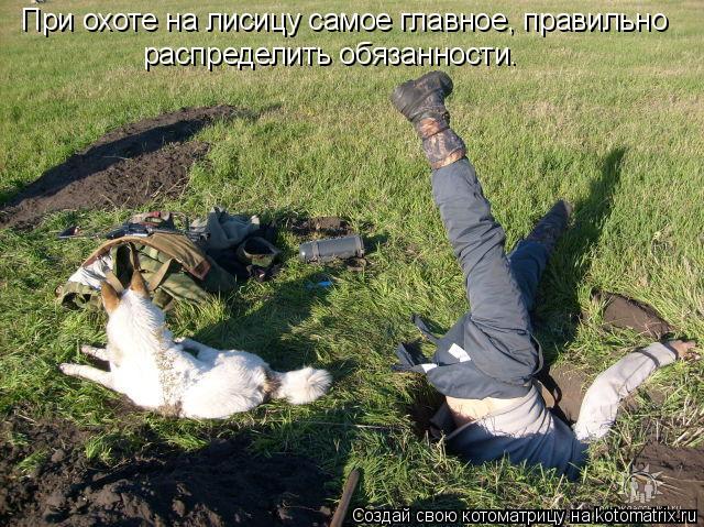 Котоматрица: При охоте на лисицу самое главное, правильно  распределить обязанности.