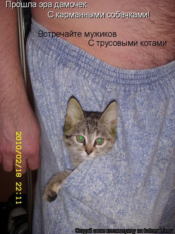 Котоматрица: Прошла эра дамочек С карманными собачками! Встречайте мужиков С трусовыми котами